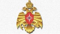 Жители Рязанской области благодарят отряд МЧС Беларуси