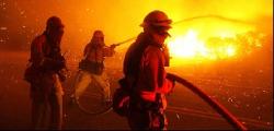 Тринадцать лесных и торфяных пожаров ликвидировано в Беларуси за минувшие сутки