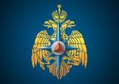 МЧС Беларуси и России согласуют вопрос о сроках пребывания сводного отряда белорусских спасателей