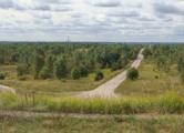 Жители «Колодищ-2» требуют экспертизы района «Зеленый Бор»