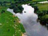 Во многих водоемах Беларуси запрещено купание