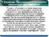 ИТ-академия откроется в Новополоцке