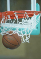 Белорусские баскетболистки выиграли у канадок на чемпионате мира