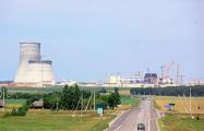 Лукашенко назвал строительство АЭС успешным примером сотрудничества с РФ