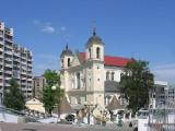 Литва призывает провести свободные выборы в Беларуси