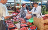 В Бресте клубнику продают по 1,5 рубля, а заготовители принимают по 50 копеек