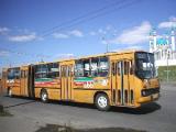 Автобусный маршрут №157 в Минске отменяется по выходным дням с 2 октября