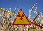Чиновники зазывают инвесторов в Чернобыльскую зону