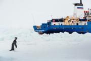 «Академик Шокальский» начал самостоятельный выход из льдов