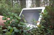 В лес за ноутбуками