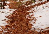 Синоптики пообещали на неделе сложные погодные условия