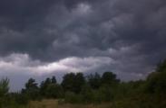 Природная стихия обесточила 158 населенных пунктов Беларуси
