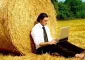Правительство выделило более 712 миллионов рублей на развитие аграрного бизнеса