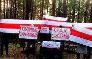 Партизаны Бреста и Боровлян вышли на акции протеста