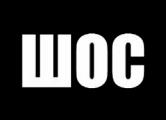 В Солигорске кричали «ШОС»