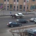 Лошадь возила по Логойску старые «Жигули»