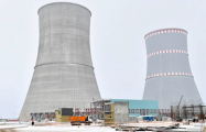 Министр энергетики Литвы: БелАЭС должна стать приоритетом для МАГАТЭ