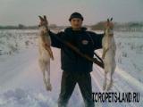 Новые правила ведения охоты и охотничьего хозяйства начнут действовать в Беларуси с 13 ноября