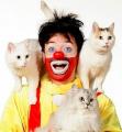 Юрий Куклачев со своим знаменитым Театром кошек посетил Минск после десятилетнего перерыва