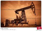 Право на оптовую торговлю импортными нефтепродуктами в Беларуси с 2011 года будут иметь только импортеры