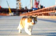 Фотофакт: Крымский мост первым открыл не Путин