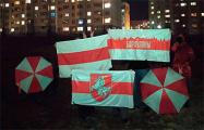 Жители Боровлян вышли на вечерний протест