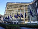 Евросоюз объявил день траура по жертвам катастрофы Ту-154