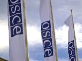 Главы европейских государств признают необходимость реформирования ОБСЕ - С.Мартынов