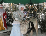 Праздничный вагон к Деду Морозу появится в составе поезда Минск-Брест с 24 декабря