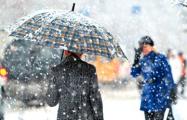 Циклон «Зисси» принес в Беларусь сильные снегопады