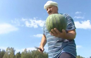 Подростков отправили собирать арбузы на бахче диктатора