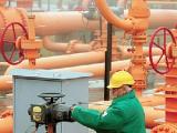 Беларусь рассчитывает к 2015 году вместе с Россией выйти на равнодоходность в ценах на газ - Семашко