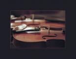 Международный фестиваль классической музыки пройдет 9-12 января в Бресте