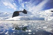 Белорусские полярники прибыли в Антарктиду