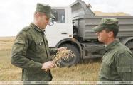 В Могилевской области на уборку зерна вывели военных