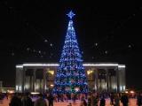 Деды Морозы и Снегурочки зажгли огни центральной елки на Октябрьской площади Минска
