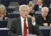 Ханнес Свобода: Украина имеет все шансы стать полноценным членом ЕС