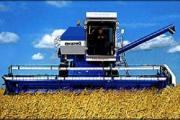 Беларусь и Украина создадут совместные предприятия в сфере АПК