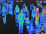 "Пандемии ""свиного"" гриппа в Беларуси не ожидается - Минздрав"