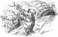 Господдержка сельского хозяйства в Беларуси до 2016 года снизится до 10%