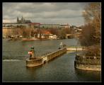 Вышеградская четверка, Австрия и Германия осудили репрессии в Беларуси