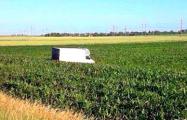 Фотофакт: Под Слуцком микроавтобус с 2,5 тоннами водки съехал в кювет