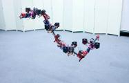 В Японии создали многомодульного «летающего дракона»