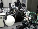 Японский профессор создал роботов-бейсболистов