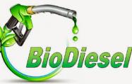Беларусь откажется от выпуска биодизельного топлива
