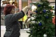 Минторг Беларуси начал сбор предложений для подготовки нового закона о торговле