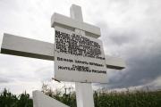 Путин усомнился в раскрытии Вашингтоном данных о катастрофе MH17 на Украине