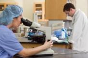 ВОЗ обеспокоен адаптацией опасных инфекций к антибиотикам