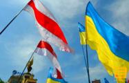 В украинском замке появились экспонаты белорусских добровольцев