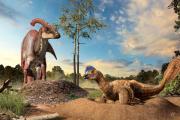 Динозавров заподозрили в строительстве «птичьих» гнезд